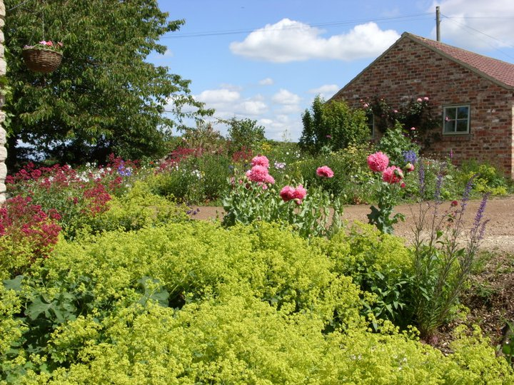 Greenhills Cattery, Photos of the Grounds Spring 2015